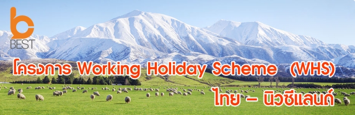 nz-south-sheep-farm-tucked-up-under-the-southern-alps-980x300_2