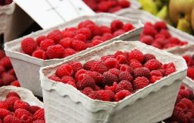 fruits-606555_1920